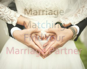 Marriage Matching Love Marriage Partner Wedding