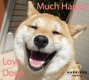 Dogecoin Payment Marriage Matching Marriage Agency